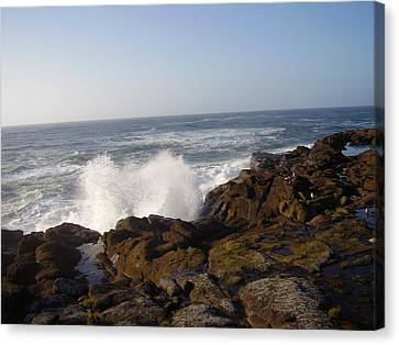 High Wave At The Oregon Coast Canvas Print by Yvette Pichette