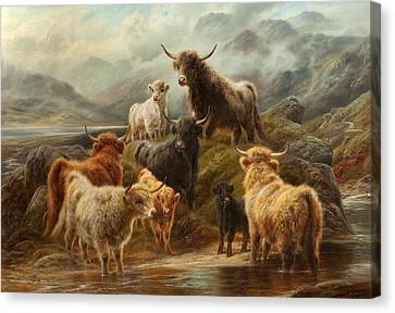 Highland Cattle, 1894 Canvas Print by Robert Watson