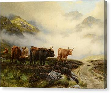 Highland Cows In A Pasture Canvas Print by Wright Barker