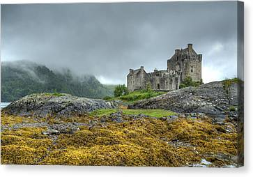 Highland  Canvas Print by John Hickson