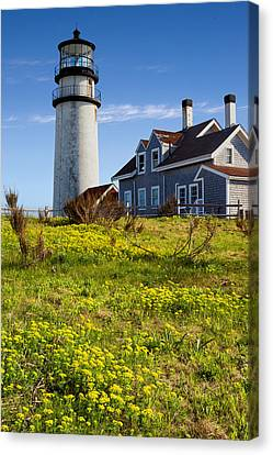Highland Light Spring Canvas Print by Bill Wakeley
