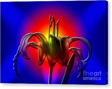 Highlight Of The Day Canvas Print by Sue Stefanowicz