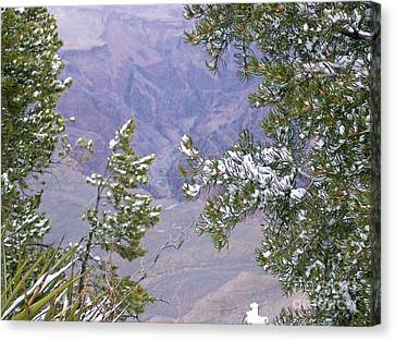 Canvas Print featuring the photograph Highlighting Snow by Roberta Byram