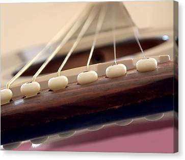 Highly Strung Canvas Print