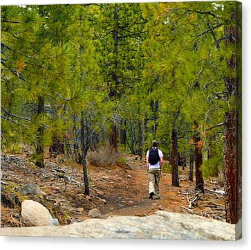 Hike On 2 Canvas Print by Brent Dolliver