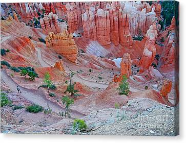Canvas Print featuring the photograph Hiking Bryce by Nick  Boren