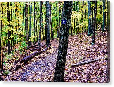 Lake Wylie Canvas Print - Hiking Trail During Autumn Season by Alex Grichenko