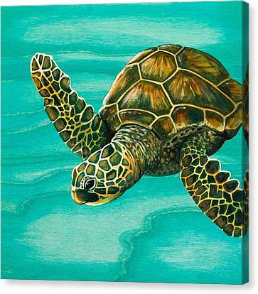 Hilahila Shy Sea Turtle Canvas Print