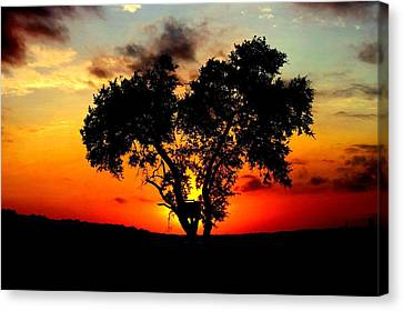 Canvas Print featuring the photograph Hill Country Darkness by David  Norman