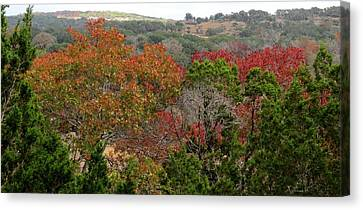 Canvas Print featuring the photograph Hill Country Splash by David  Norman