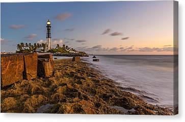 Hillsboro Inlet Lighthouse Canvas Print by Claudia Domenig