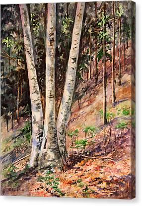 Hillside Birch Canvas Print by Kristine Plum