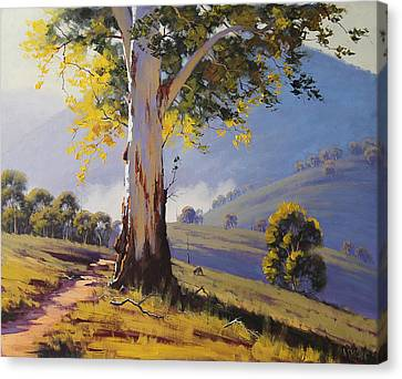 Hilly Australian Landscape Canvas Print by Graham Gercken