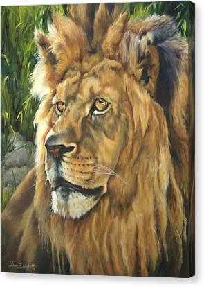 Him - Lion Canvas Print by Lori Brackett