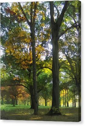 Hint Of Autumn Canvas Print by Susan Savad