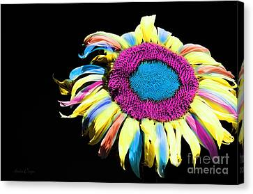 Hippie Sunflower Rainbow Painterly Canvas Print by Andee Design