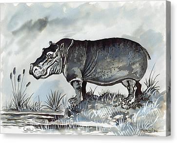 Hippo Canvas Print by Anthony Mwangi