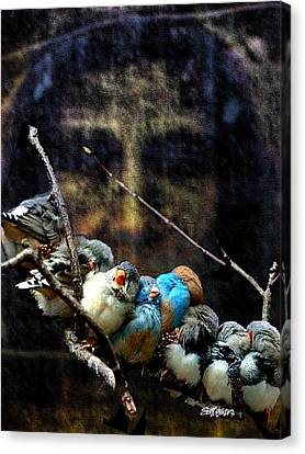 His Eye Is On The Sparrow Canvas Print by Seth Weaver