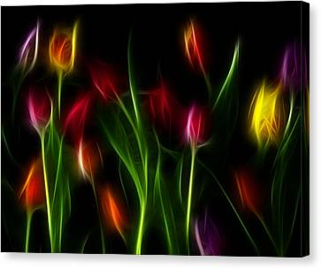 Canvas Print featuring the digital art His Tulips by Karen Showell