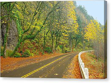 Historic Columbia Gorge Highway Canvas Print by Steve Warnstaff
