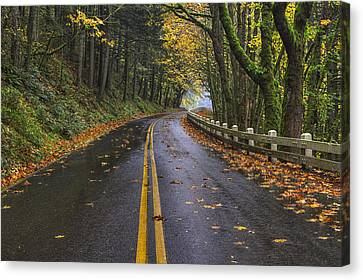 Scenic Drive Canvas Print - Historic Columbia River Highway by Mark Kiver
