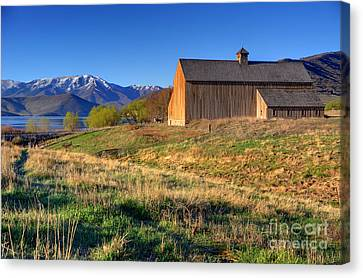 Historic Francis Tate Barn - Wasatch Mountains Canvas Print by Gary Whitton