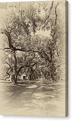 Historic Lane Antique Sepia Canvas Print by Steve Harrington