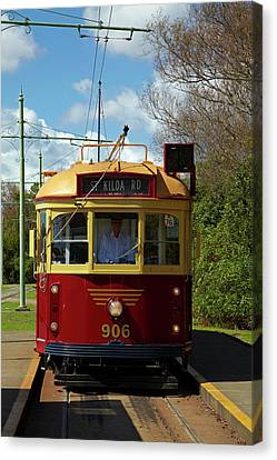 Historic Tram, Motat (museum Canvas Print by David Wall