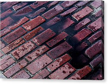 Hit The Bricks Canvas Print by Andrew Pacheco
