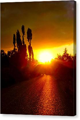 Canvas Print featuring the photograph Hit The Road Jack by Zafer Gurel