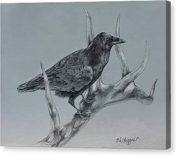 Hitchhiker Drawing Canvas Print