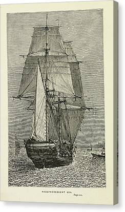 Hms Beagle Canvas Print by British Library