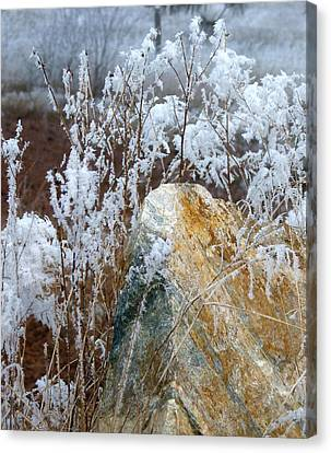 Hoarfrost 23 Canvas Print by Will Borden
