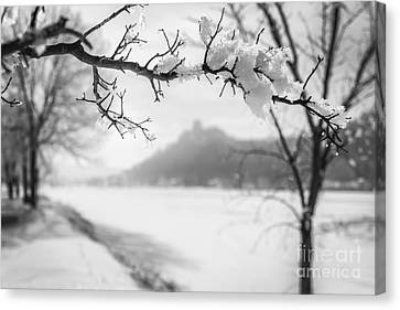 Canvas Print featuring the photograph Hoarfrost With Sugarloaf by Kari Yearous