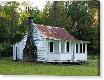 Hobcaw Cabin Canvas Print by Sandra Anderson