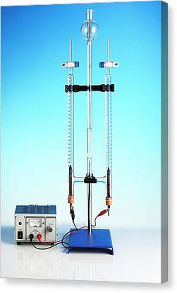 Hoffman Voltameter For Electrolysis Canvas Print by Science Photo Library