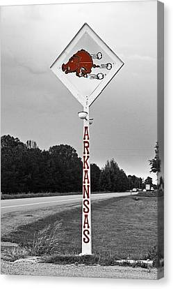 Razorbacks Canvas Print - Hog Sign - Selective Color by Scott Pellegrin