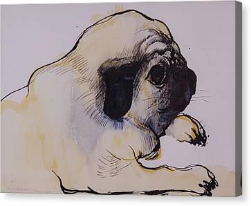 Hogarth Canvas Print by Brenda Brin Booker