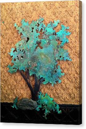 Hokkidachi Copper Bonsai Canvas Print by Vanessa Williams