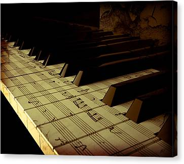 hold Piano Canvas Print