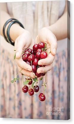 Holding Cherries  Canvas Print by Viktor Pravdica