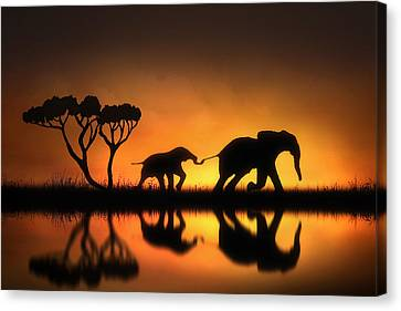 Elephants Canvas Print - Holding On by Jennifer Woodward