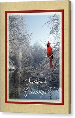 Holiday Season 2013 Canvas Print by Teresa Schomig