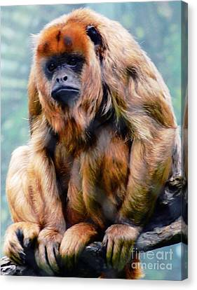 Holler Monkey Canvas Print by Kathleen Struckle