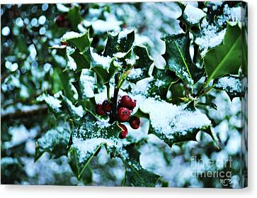 Canvas Print featuring the photograph Holly And New Snow by Mindy Bench