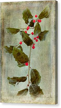 Decorated For Christmas Canvas Print - Holly Branch With Red Berries by Dan Carmichael