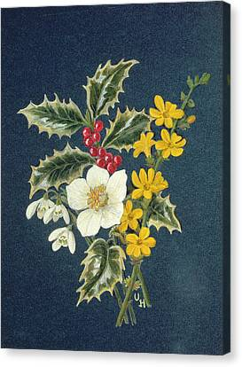 Holly, Christmas Rose, Snowdrop And Winter Jasmine Wc On Paper Canvas Print by Ursula Hodgson