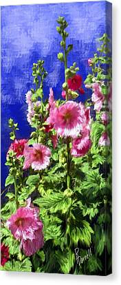 Hollyhock Haven Canvas Print by Ric Darrell