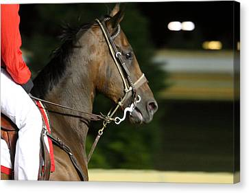 Hollywood Casino At Charles Town Races - 121255 Canvas Print by DC Photographer