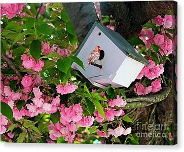 Home And Garden Canvas Print